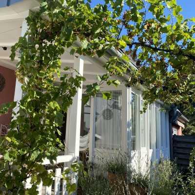 Die Pergola Ist Ein Idealer Ruhepunkt In Ihrem Garten. Als überdachter  Sitzplatz Eignet Sie Sich Hervorragend Zum Entspannen.