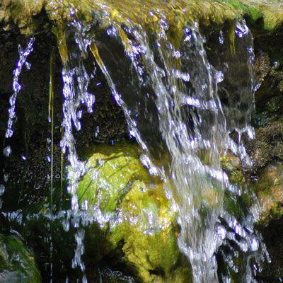 Gartengestaltung Mit Wasser - Ihr Gartengestalter In Bergkamen